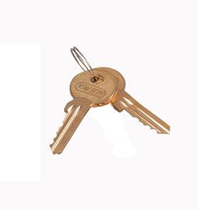 MOELLER / EATON náhradný klúč pre rozv. NWE, NWS s cylindr.vložkou, 2ks