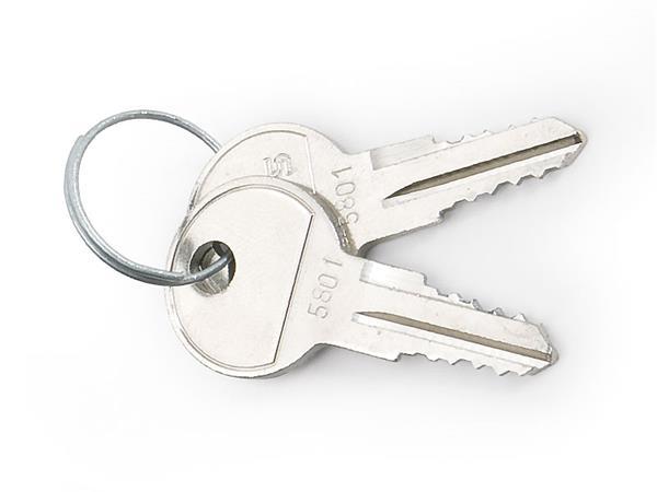 TRITON nahradný klúč pre nastenne rozvadzače (pár)