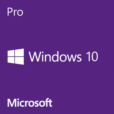 OEM GGK Windows 10 Pro 64-Bit English 1PACK DVD