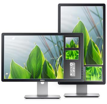 Dell Professional P2014H 49.4cm(19.5