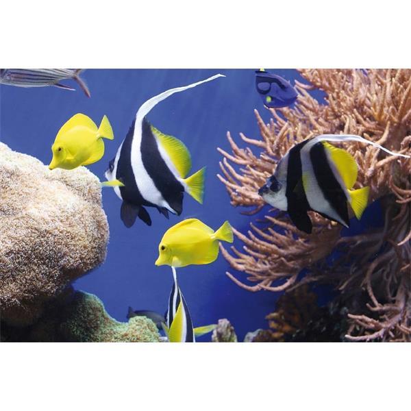 Fellowes Earth Series™ podložka pod myš, morské ryby