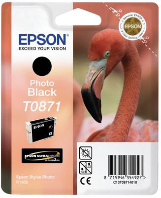 Epson atrament SP R1900 photo black